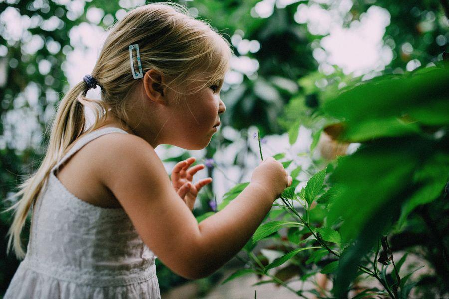 natuurlijke kinderfotografie den bosch