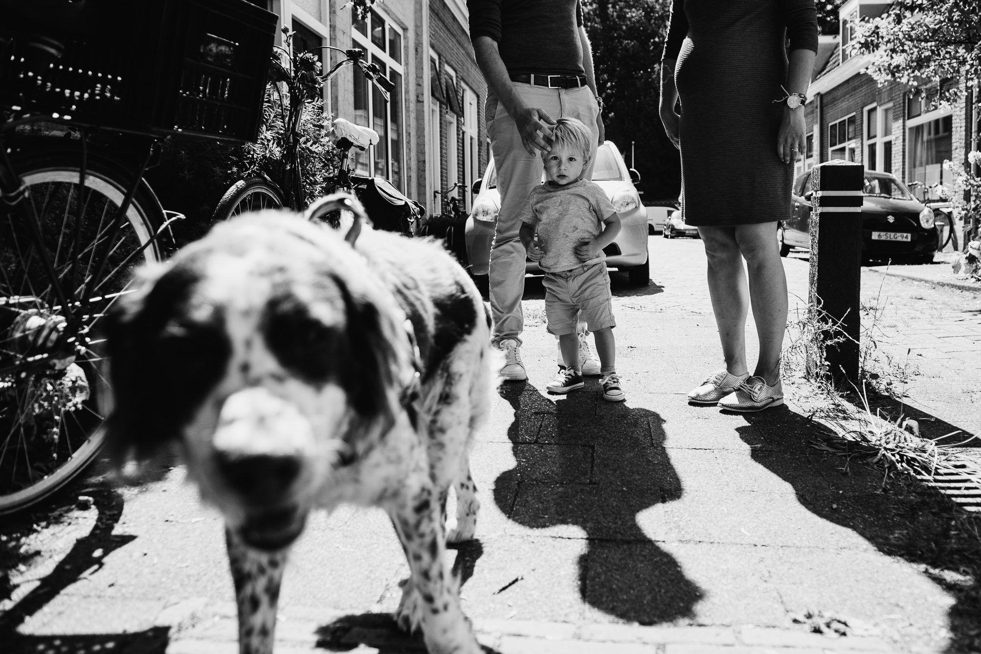 stoere foto's gezin Utrecht